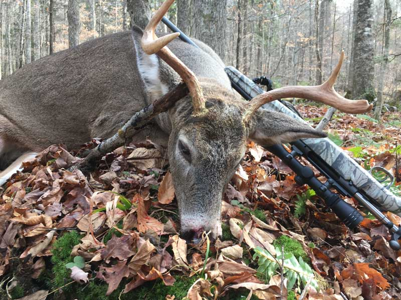 Chris Schroer of the West River Hunt Club tracked down this 140-pound, 4-pointer on Nov. 10 in Hamilton County.