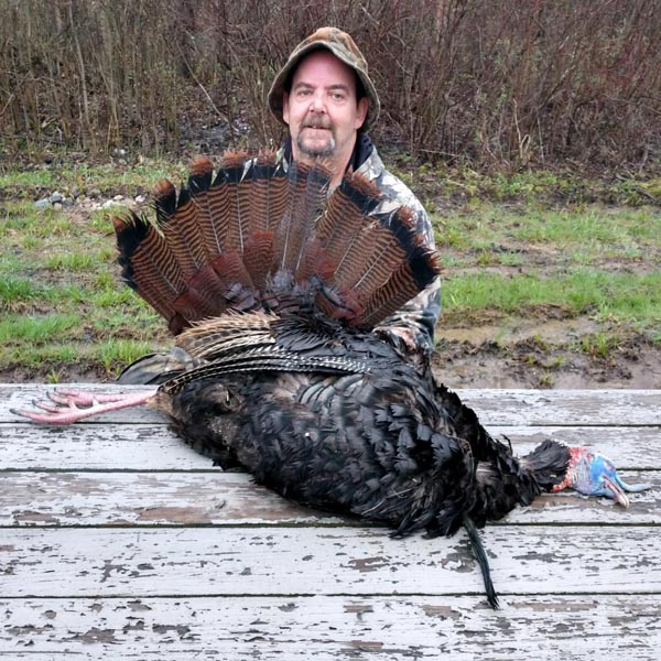 Harmon Fares shot this bird on May 3rd in Washington County. The weight was 23-pounds,  9-inch beard, 7/8-inch spurs.